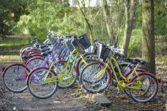 Quelques vélos sur le campus - Photo YLB