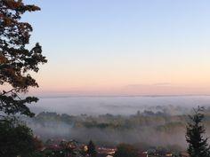 Le jour se lève à Mugron #landes #mugron #sunrise #brume #chalosse #fog