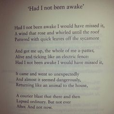 Had I Not Been Awake, Seamus Heaney