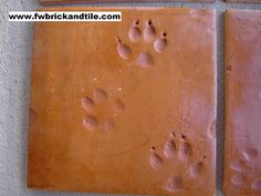 Mexican Saltillo Tile sometimes while they are drying in the sun an coyote, chicken, or other animal may leave their prints in a tile - to have one is good luck!
