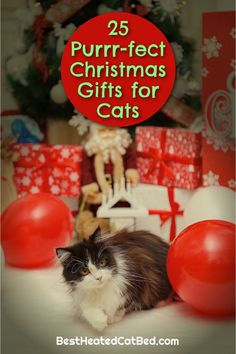 It's hard to believe, but the holiday shopping season is here. As you pick out presents for family and friends, remember to include your favorite feline on your gift-giving list. If you are stumped for what to get your kitty this year, we can help! We have rounded up the best Christmas gifts for cats so you can spoil your kitten this holiday season!