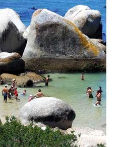 Swimming with penguins, Boulders Beach, Cape Town, South Africa