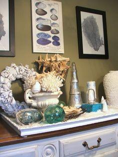 coastal decorating, decorating blog, sea shells, coastal christmas, intaglios, sea fan