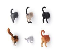 Kikkerland Set Of 6 Kitten Cat Butt Fridge Novelty Funny Magnets Grey Tabby MG53 | Collectables, Kitchenalia, Fridge Magnets | eBay!