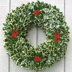 ARE FRESH CHRISTMAS WREATHS FOR YOU?Potential customers who have never actually seen one of our fresh holiday wreaths might find it helpful to know that the entire process of creating, decorating and shipping each fresh Christmas wreath is. Woodland Christmas, Elegant Christmas, Christmas Fun, Christmas Decorations, Natural Christmas, Christmas Kitchen, Holiday Decorating, Holly Wreath, Holiday Wreaths
