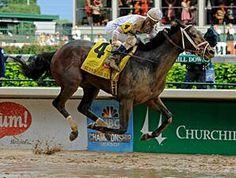 Super Saver. 2010 Kentucky Derby winner. Jockey: Calvin Borel. Winning time: 2:04:45