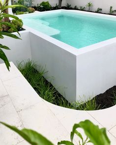Raised White Pool - Fully tiled white pool with microcement render design by tr. - Raised White Pool – Fully tiled white pool with microcement render design by tristanpeirce Lands - Natural Swimming Pools, Swimming Pools Backyard, Swimming Pool Designs, Garden Pool, Backyard Landscaping, Backyard Pool Designs, Small Backyard Pools, Outdoor Pool, Outdoor Gardens