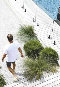 Indigenous plantings and a coastal aesthetic help blur the boundaries between a new garden and its beachside location in this striking home. The collaboration between homeowner and builder of the house and garden, Daryl Powell of Made Build and landscape Coastal Gardens, Beach Gardens, Outdoor Gardens, Indoor Outdoor, Landscaping Trees, Coastal Landscaping, Living Pool, Outdoor Living, Landscape Architecture Magazine