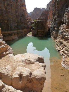 Guelta dans le parc national du Tassili N'Ajjer. ALGERIE -