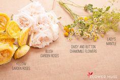 Bowl of Happy Ingredients