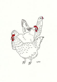 Urban Chickens Line Drawing Print 8x10