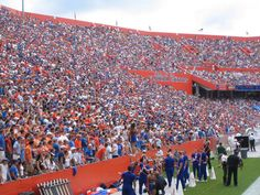 Should alcohol be allowed at more college football games? Students 21 and older, parents and other fans are awaiting a decision at the University of Florida, which is in the Southeastern Conference (S University Of Florida Football, University Of Michigan Campus, College Football Uniforms, College Football Players, Ohio State Football, Football Stadiums, Uf Football Game, Football Couples, Football Girlfriend