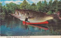 Vintage // Color Photo // Postcard // Fishing by foundphotogallery
