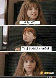 >>>Cheap Sale OFF! >>>Visit>> Memes harry potter memes potter memes are the best. If you love funny memes about harry potter you'll love our pick of 6 HP memes you won't believe you missed in Harry Potter funny memes HP funny memes. Harry Potter World, Harry Potter Love Quotes, Images Harry Potter, Mundo Harry Potter, Harry Potter Puns, Facts About Harry Potter, Harry Potter Funny Quotes, Harry Potter Funny Pictures, Harry Potter Ships