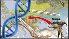 Modern Europeans descend from FOUR groups of hunter-gatherers: New strand of DNA discovered in the Caucasus is the 'missing piece in the ancestry puzzle' Seq. Turkic Languages, Semitic Languages, Dna Genealogy, European Languages, Human Evolution, Indian Language, Sumerian, Historical Maps, Bronze Age