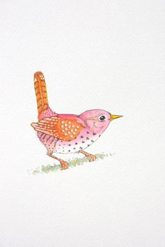 Bird Illustration by Laura Kirste Campbell