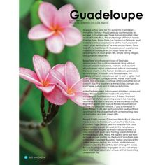 @guadeloupeislands As seen in our #FifthHarmony issue! #360Magazine @island_runaways #Travel #Food #Culture http://the360mag.com/issue.html