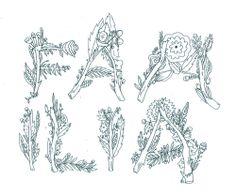 hand lettering, plants