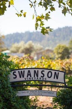 """Swanson Vineyards:  """"elegant but quirky"""".  Go for the cabernets"""