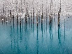 Kent Shiraishi, photographer,  National Geographic Society, Washington, D.C. - Blue pond in winter.