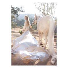 #nwweddingphotography