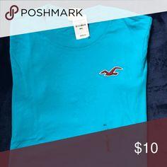 Men's Hollister T-Shirt Teal blue Men's Hollister Short Sleeved T-Shirt Hollister Shirts Tees - Short Sleeve