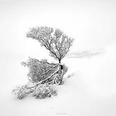 Black&white series Lofoten islands Danielkordan.com #Lofoten #Norway by danielkordan