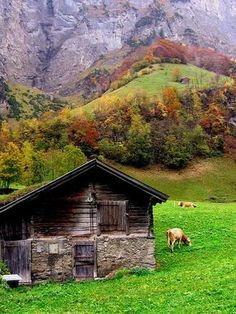 Barn In Switzerland looks like a cool place to live to me!
