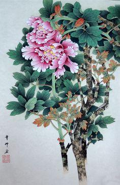 Plant Illustration, Botanical Illustration, Old Illustrations, Chinese Painting Flowers, Peony Drawing, Oriental, Asian Flowers, Flower Art, Peony Flower