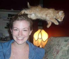Ich will auch mit aufs Bild! Bei diesen Katzen ist Lachen garantiert!