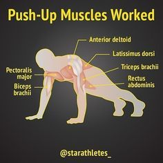 Muscle Fitness, Gain Muscle, Health Fitness, Push Up Muscles Worked, Bodyweight Upper Body Workout, Workout Plans, Workout Ideas, Stay In Shape, Total Body