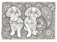 """Shih Tzu Adult Coloring Page - """"Twins"""""""
