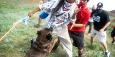 """ABOMINATION!!!!!!!!!!!!!!!!!!! Dakota Access Pipeline Company Attacks Native American Protesters With Dogs and Mace - """"private security firms started using dogs to intimidate the anti-pipeline activists, including women and children. Several people were then attacked and bitten by the dogs being controlled by around eight private security personnel. The protestors were also attacked with pepper spray."""""""