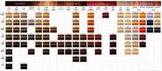 Vai Colorir ou Descolorir os Cabelos? - Oh, Lollas  #nopoo #lowpoo #cronogramacapilar #curlygirlmethod