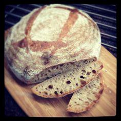 Sourdough full grain wheat loaf with 5% Raimugido wet starter.