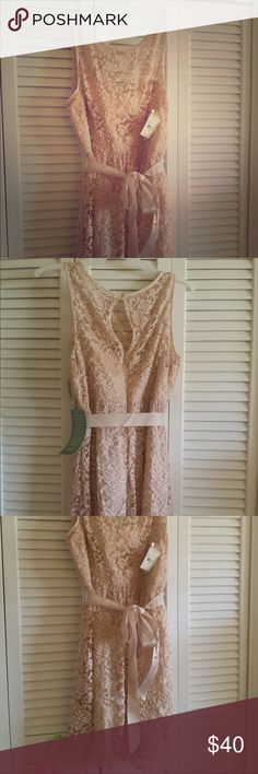 """Light pink lace dress, knee length. New with tags! Simply Liliana brand. New with tags! Light pink (""""oyster"""") shade. Ribbon at the waist. Size 18. Excellent choice for a wedding or elegant gathering. Price negotiable. Dresses"""