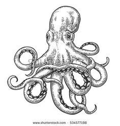 Octopus. black engraving vintage illustrations. Isolated on white background. - Shutterstock Premier