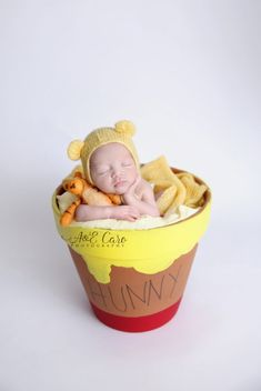 Winnie the Pooh newborn session www.aecarophotography.com