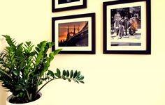 An other charming spot in the apartment www.bellhostel.com Uni, Gallery Wall, Frame, Modern, Home Decor, Picture Frame, Trendy Tree, Decoration Home, Room Decor
