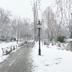 This lamp post reminds me of a winter scene of Narnia ❄️ Swipe to the right to see a lovely pic I found in 🦁 The Ch, Cs Lewis, Winter Scenes, Narnia, Vienna, Childhood Memories, Workshop, Calligraphy, Outdoor
