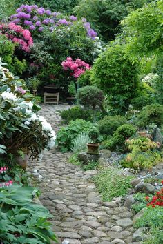 I love thre plan to the left; rhodedendron, hostas, bleeding hearts- would look great under a window