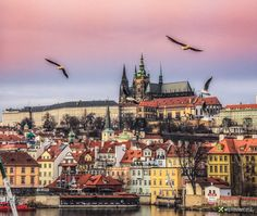 Prague Castle by Vittorio Delli Ponti on 500px