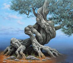 Immagine di http://4.bp.blogspot.com/-cHfh-enN4M8/Ti68bn0RlhI/AAAAAAAAAEQ/T5hbVsmx-lE/s1600/ulivosogno.JPG.