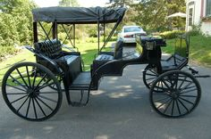 would love love love to have a horse and carriage as our transport!