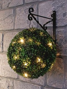Solar Powered Topiary Ball with LED Lights… adding leds to a ball then planting with hens and chicks? Diy Garden, Garden Crafts, Dream Garden, Lawn And Garden, Garden Projects, Garden Art, Garden Design, Landscape Lighting, Outdoor Lighting