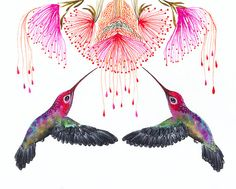 Hummingbirds and flower // SALE 3 for 2 // Together by TevaKiwi, $18.00