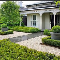 """ANDREW STARK on Instagram: """"Reposting this well balanced and stylish garden I built after major renovations to this beautiful inner city home.....  I repositioned the…"""" Cottage Front Yard, Trees For Front Yard, Front Yard Decor, Front Yard Design, Front House Landscaping, Driveway Landscaping, Modern Landscaping, Landscaping Tips, Modern Landscape Design"""