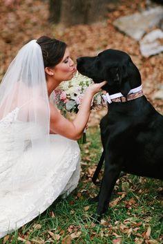 "Bride kissing ""best dog"" photo | wedding photography | Brittany Custer Photography | BrittanyCusterPhotography.com"