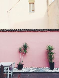 Pink patio wall | ki