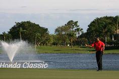 WoooooWeeeeee Tiger Woods!!!!